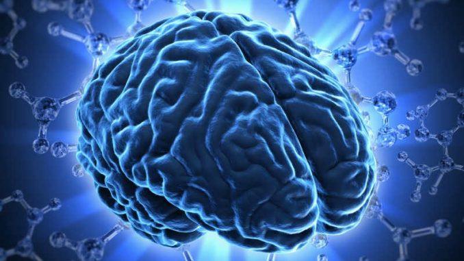 مغز خود را تغییر دهید