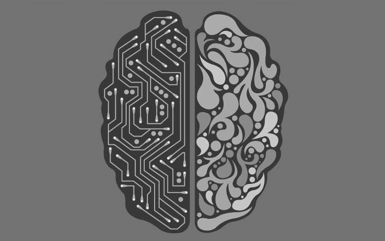 مغز خزنده و نئو کورتکس