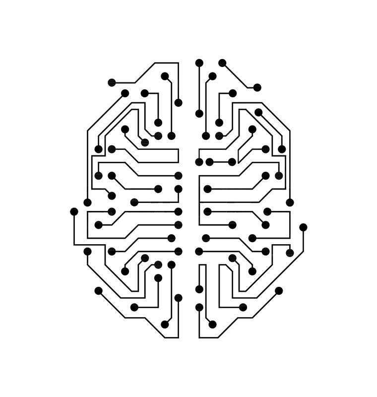 پایانههای مدارهای مغز